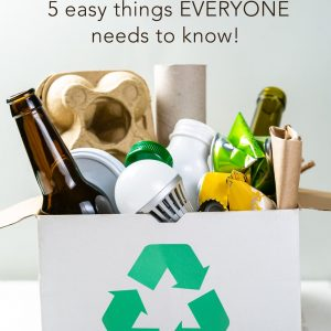 Recycling 101 – 5 Easy Things EVERYONE Needs to Know!
