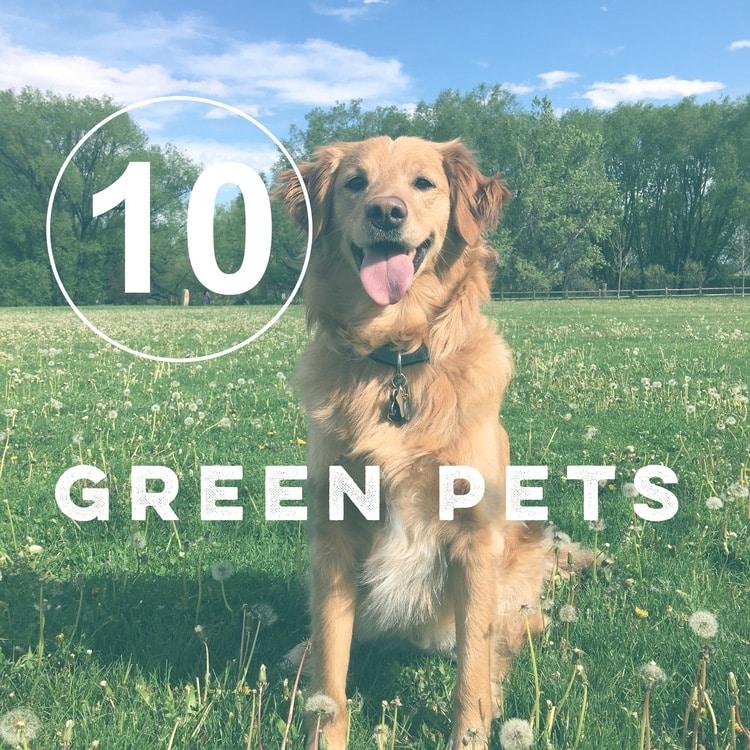 Zero waste pets
