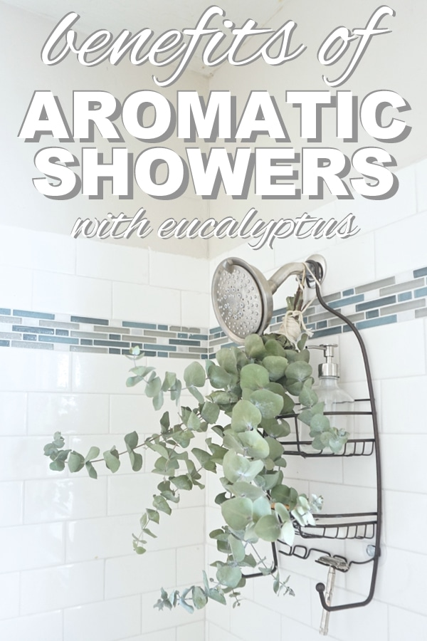 The benefits of aromatic showers with eeucalyptus