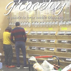 Rainbow Grocery: A Guide to Zero Waste Shopping