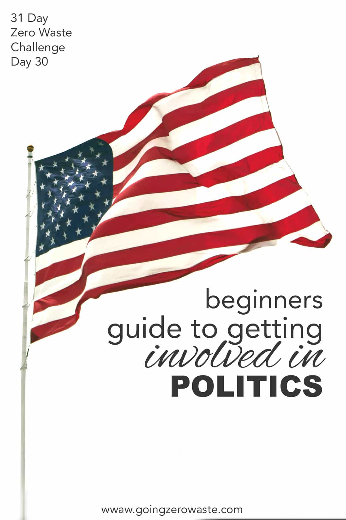 Beginners Guide to Getting Politically Involved - Day 30 of the Zero Waste Challenge from www.goingzerowaste.com #zerowaste #ecofriendly #gogreen #sustainable #zerowastechallenge #challenge #sustainablelivingchallenge #getpolticallyactive #politics #localgovernment