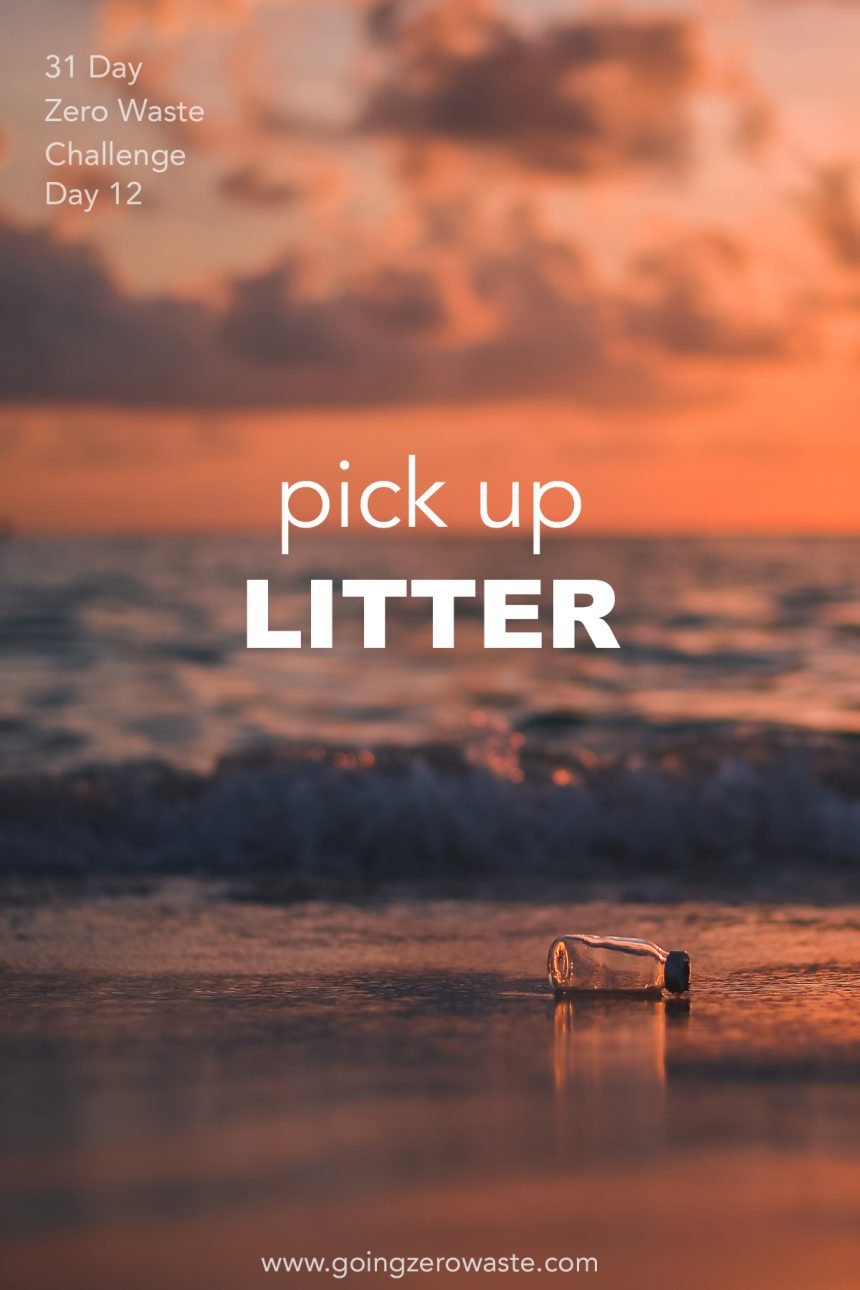 Pick up Litter – Day 12 of the Zero Waste Challenge