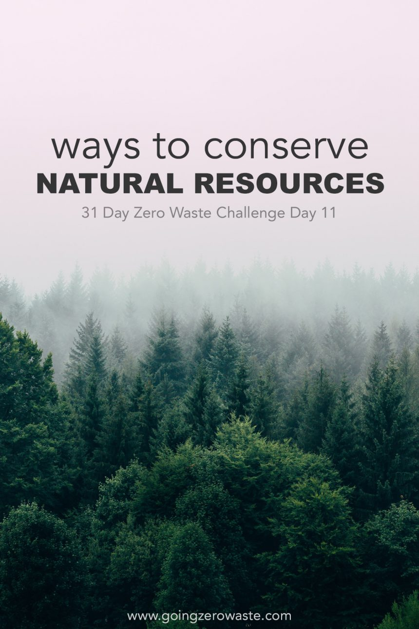 Ways to Conserve our Natural Resources – Day 11 of the Zero Waste Challenge
