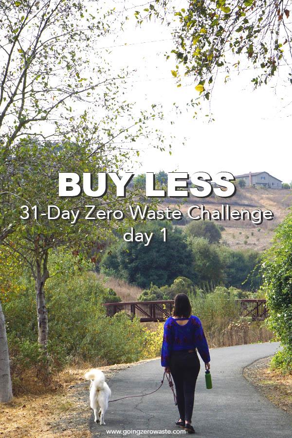 Buy Less - Day 1 of the Zero Waste Challenge from www.goingzerowaste.com #zerowaste #ecofriendly #gogreen #sustainable #zerowastechallenge #challenge #sustainablelivingchallenge #BuyLess