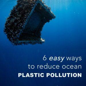 6 Easy Ways to Reduce Ocean Plastic Pollution