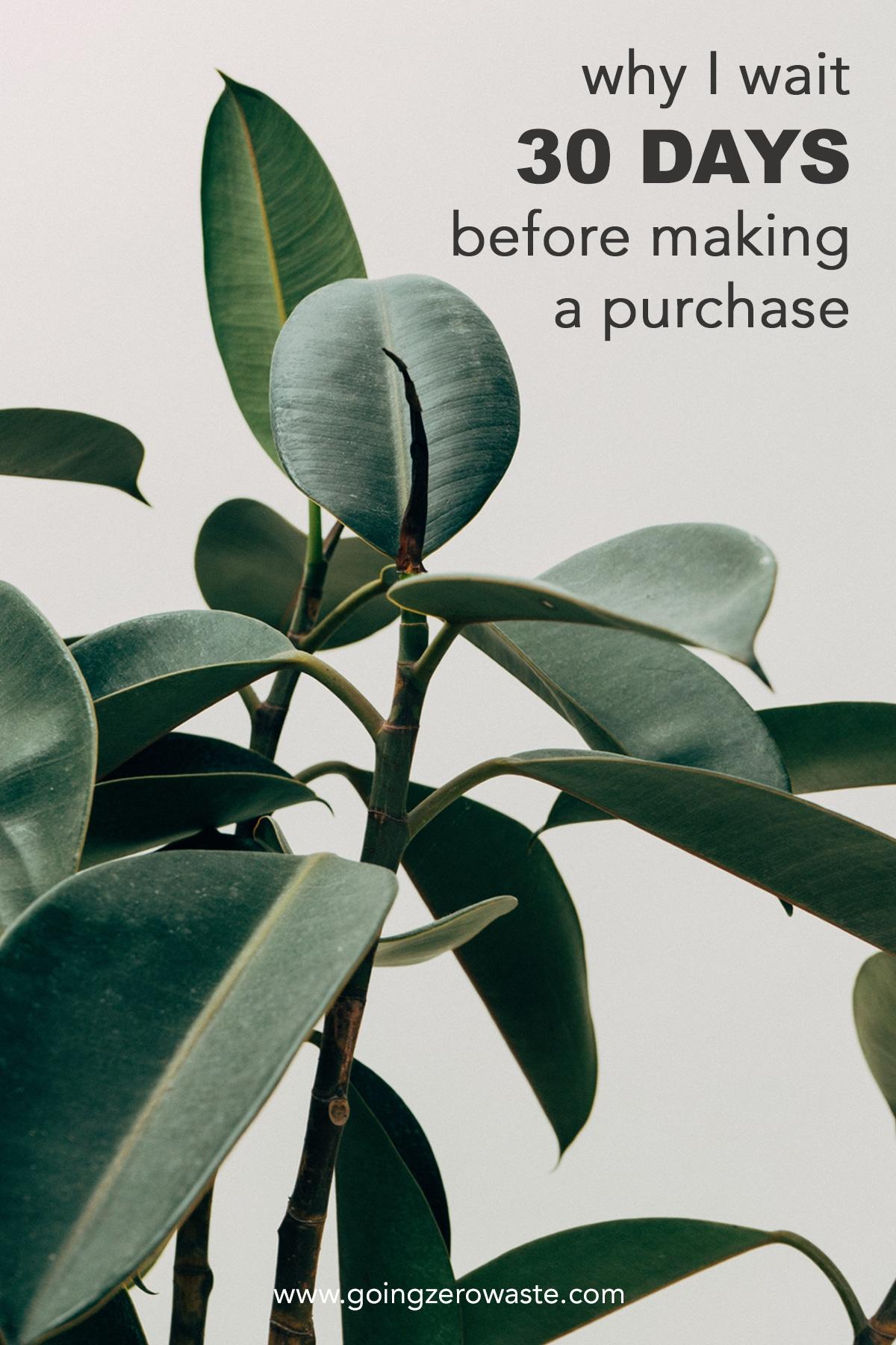 Why I Wait 30 Days Before I Make a Purchase from www.goingzerowaste.com #zerowaste #ecofriendly #gogreen #sustainable #minimalism #minimal