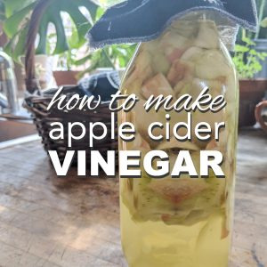 How to Make Apple Cider Vinegar from Scraps