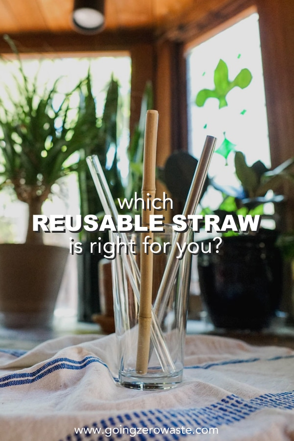 Which Reusable Straw is Right for You?