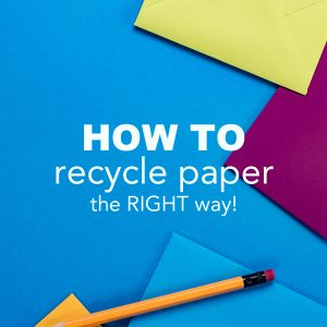 How to Recycle Paper the Right Way!