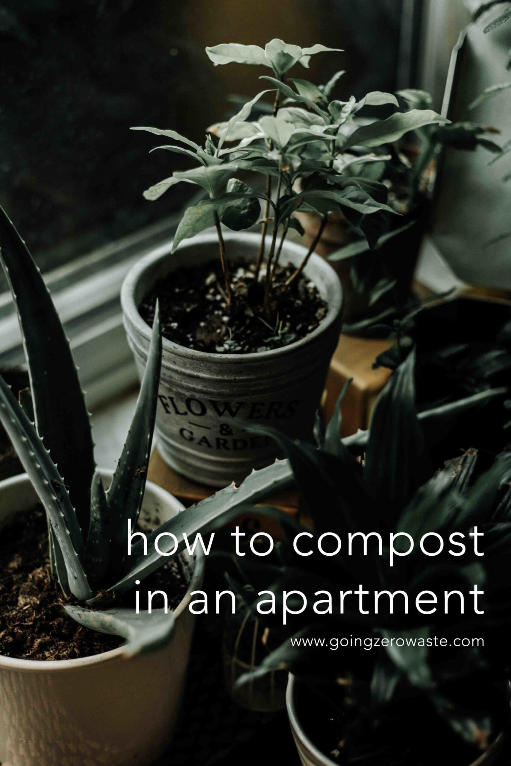 Composting in apartments