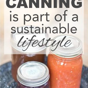 6 Reasons Canning is Part of a Sustainable Lifestyle