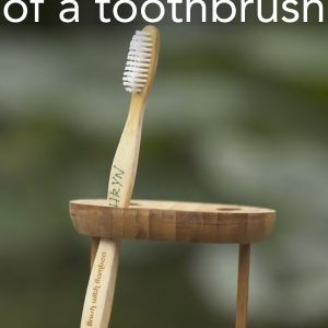 The Life of a Toothbrush