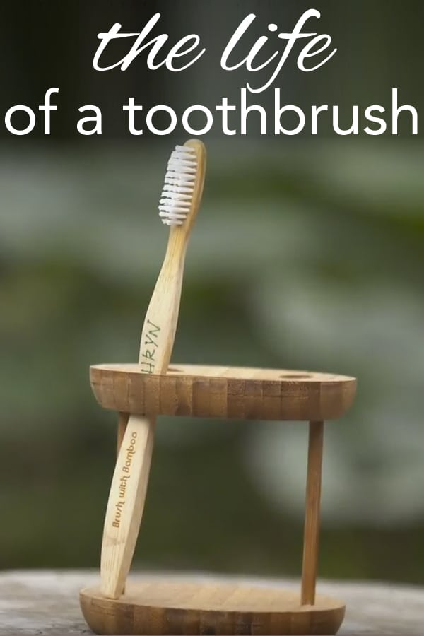 the life of a toothbrush from www.goingzerowaste.com #zerowaste #toothbrush #bamboo #bambootoothbrush