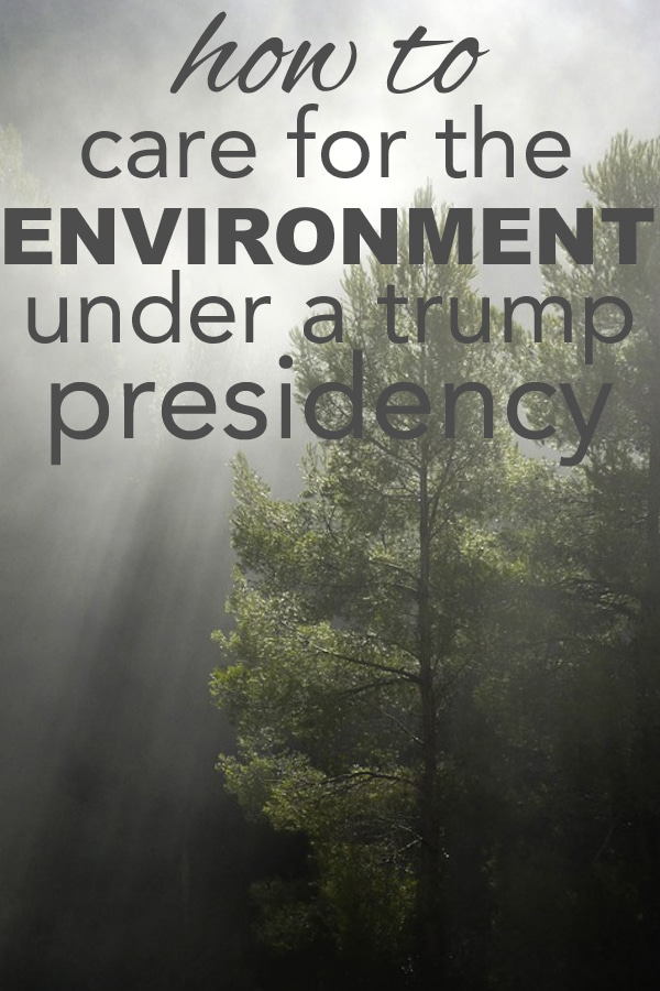 How to Care for the Environment Under a Trump Presidency