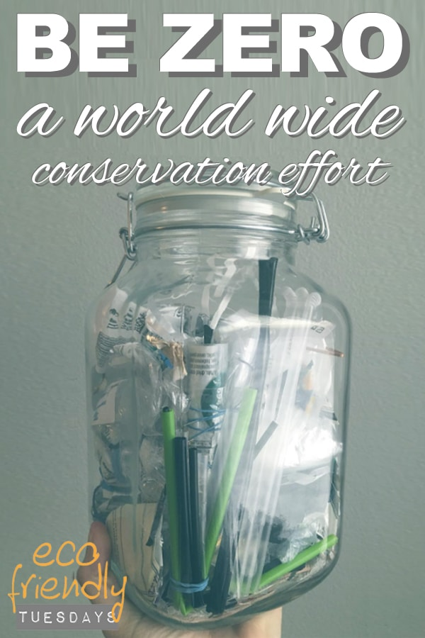 Be Zero: A World Wide Conservation Effort