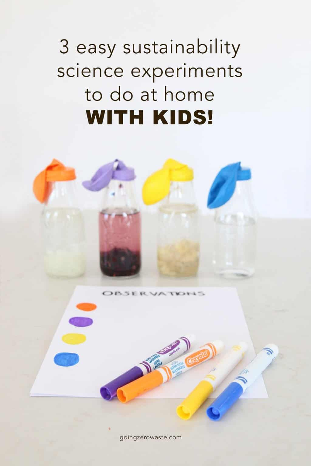 3 Simple Sustainability Science Experiments To Do At Home With Kids