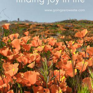 5 Secrets for Finding Joy in Life